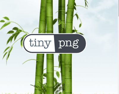 TinyPNG Logo